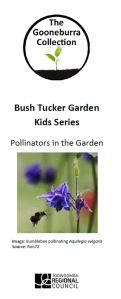 Pollinators in the garden