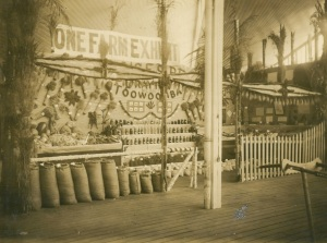 Image: One Farm Exhibit RNA Exhibition 1914 Source: J. Donges
