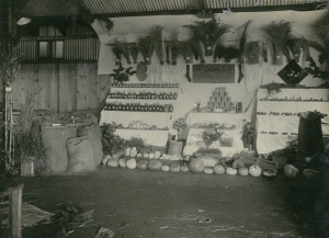 Image: One Farm Exhibit Toowoomba Show 1920 Source: J. Donges
