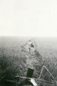 Image: Crash path 1957 Source: M. Ferguson