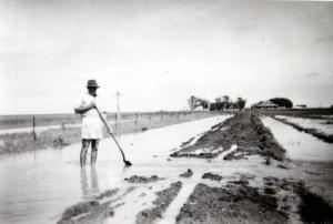 "Image: 1955 flood on ""Broxbourne"" Norwin area. Stan Ferguson draining the roadway. Source: M. Ferguson"
